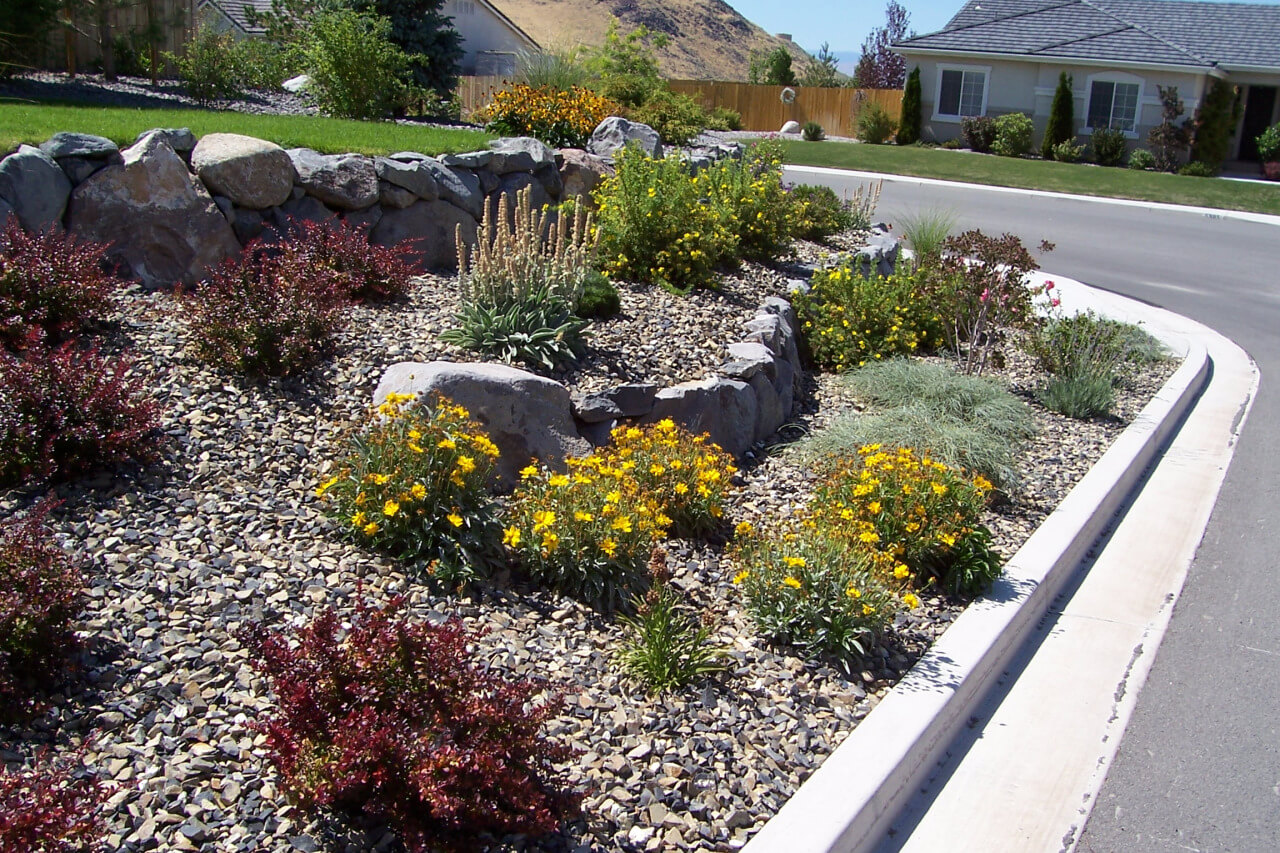 Grass is okay gail willey landscaping for Xeriscape images