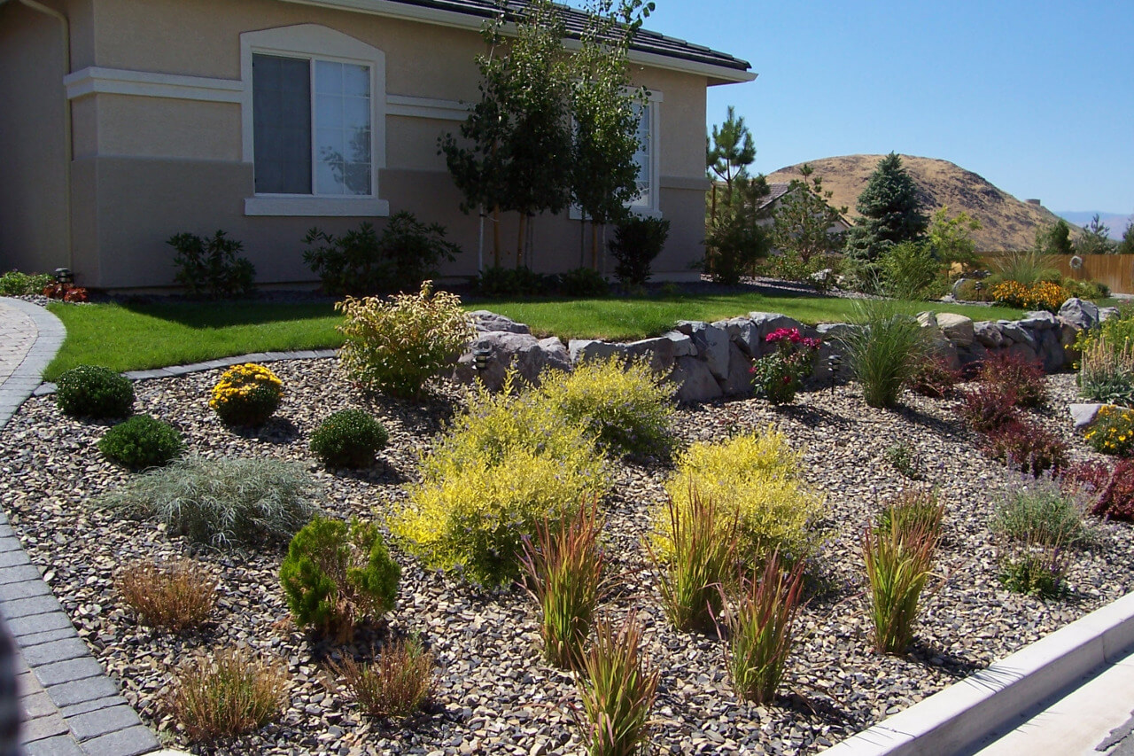 Xeriscape With Sod