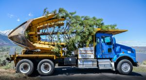Relocation Truck with Pine Tree