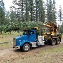 Tree Spade 30foot